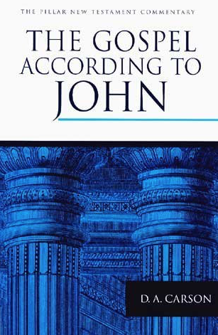 The Pillar New Testament Commentary : The Gospel according to John